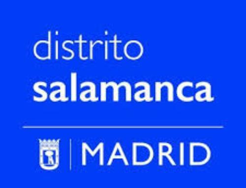 Adjudicación Centro Cultural en la Plaza de Colón de Madrid para el Distrito de Salamanca